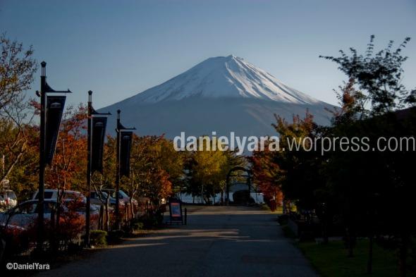danielyara_Kawaguchiko