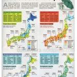 danielyara_infografia